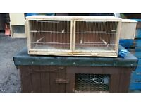 budgie cages for sale