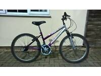 Ladies Bike 14 inch frame