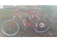 80cc 2stroke mountain bike swap