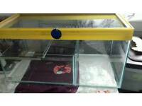 Hamster/mice glass tank