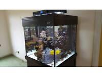 AquaOne 275 Cube Marine Aquarium