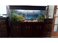 4ft aquarium and rosewood unit -
