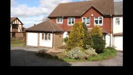 Single room for rent in Tunbridge Wells