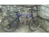 Gt mens mountain bike 21 speed