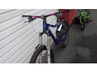 Kona stinky 6 limited edition DH FREERIDE CR/YZ/RM MOTOCROSS DOWNHILL MARZOCCHI FOX MAVIC