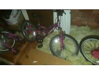 3 x bikes for sale...bmx +2xgirls bikes. Cam deliever for fuel