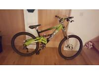 Downhill Saracen customised mountain bike
