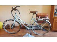 Ladies Dutch bike - Brownie Bobbin