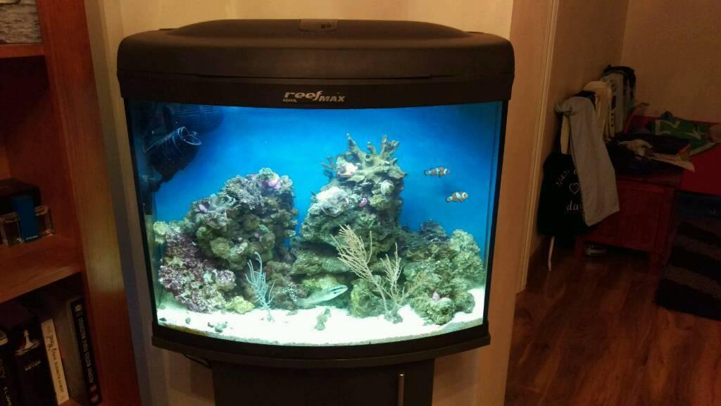 Marine reef max aquarium fish tank in london gumtree for Saltwater fish tank for sale