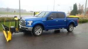 2015 Ford F-150 F150 SNOWAY PLOW SYSTEM AND SPREADER