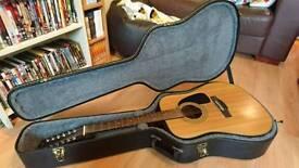 Dg fender 12 string guitar