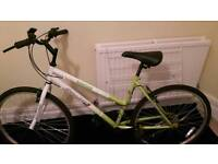 Green Challenge mountain bike