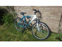 Great conditon womens bike