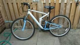 ladies older girl's bike