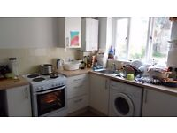 Lovely ground floor flat Glastonbury, large garden, overlooking the Tor, car space, 2 large rooms