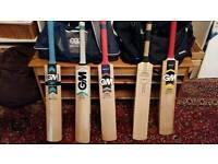 Cricket bat GM 909 Apex DXM
