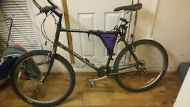RALEIGH AMAZON MOUNTING BIKE IN VERY GOOD CONDITION