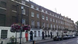 Central London Studio Flat in Period Building