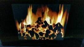 Dimplex living art range fire