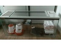 3 ft Fish tank with Heat mat , Infra fed heat lamp
