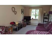 Double room to let - working person or student only sharing with 2 females