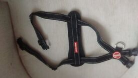 EZYDOG HARNESS WITH SEATBELT ATTACHMENT - MEDIUM SIZE - HARDLY USED - IN EXCELLENT CONDITION