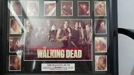 THE WALKING DEAD season 5 frame limited edition (no.9/300)