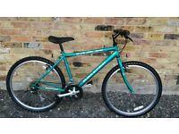 Mountain bike (raleigh)