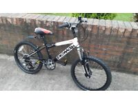 £45, Boys mountain bike.