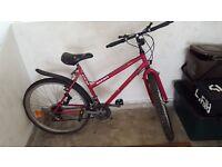 Mariner Ladies Pink Bike