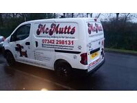 McMutts Dog Walking & Pet Services