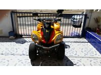 Quad Bike 300CC