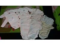 Bundle of 12 x bodysuits 0-3 months