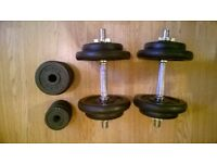 York dumbbell set with changeable weight plates