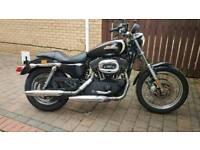Harley Davidson xl1200 r Sportster