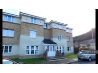 2 bedroom flat in Coed Celynen Drive, Newport, NP11 (2 bed)