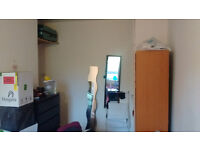 Double room in quiet international flat for full-time professional (zone2)