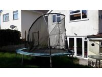 Trampoline for sale. unused for a while. B uyer to dismantle snd remove. £50