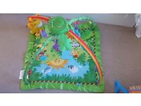 Fisher Price Playmat Immaculate