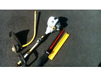 RYOBI EXPAND IT STRIMMER / HEDGE CUTTER WITH EXTENTION , LONG REACH.