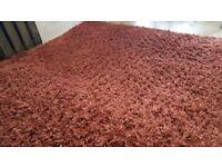 Dunelm carpet