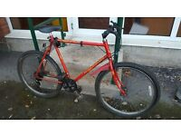 RALEIGH SCORPION MOUNTAIN BIKE - 26 inch Wheel