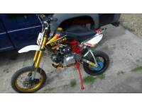 110cc pitbike rock star