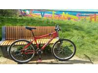 Carrera Ltd mountain bike,Shocks, Mint condition, £125ono