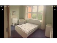Bright Double room in the friendly house (unfurnished)