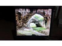 Dell 19 inch monitor 1907FPc
