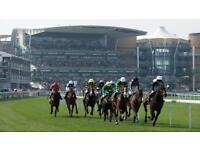 Grand National Festival zone tickets for sale