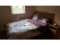 Hawkhill double room for rent