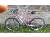 lady bike Dunlop