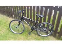 Dunlop sport mountain bike